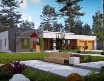 Современный одноэтажный дом с гаражом на две машины.  Типовой проект жилого дома zx102.