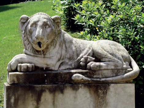Выразительный фонтан - лев