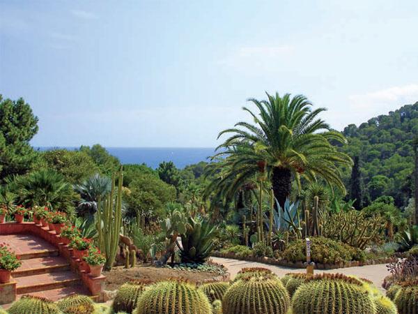 Сады испанского побережья