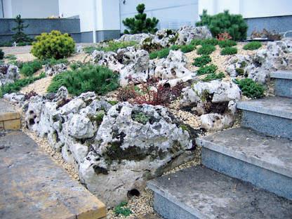 7 правил посадки растений