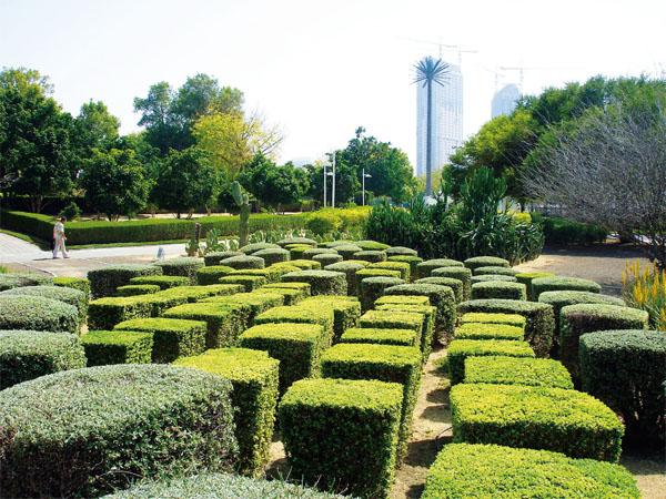 Сады Эмиратов: эволюция цветной пустыни