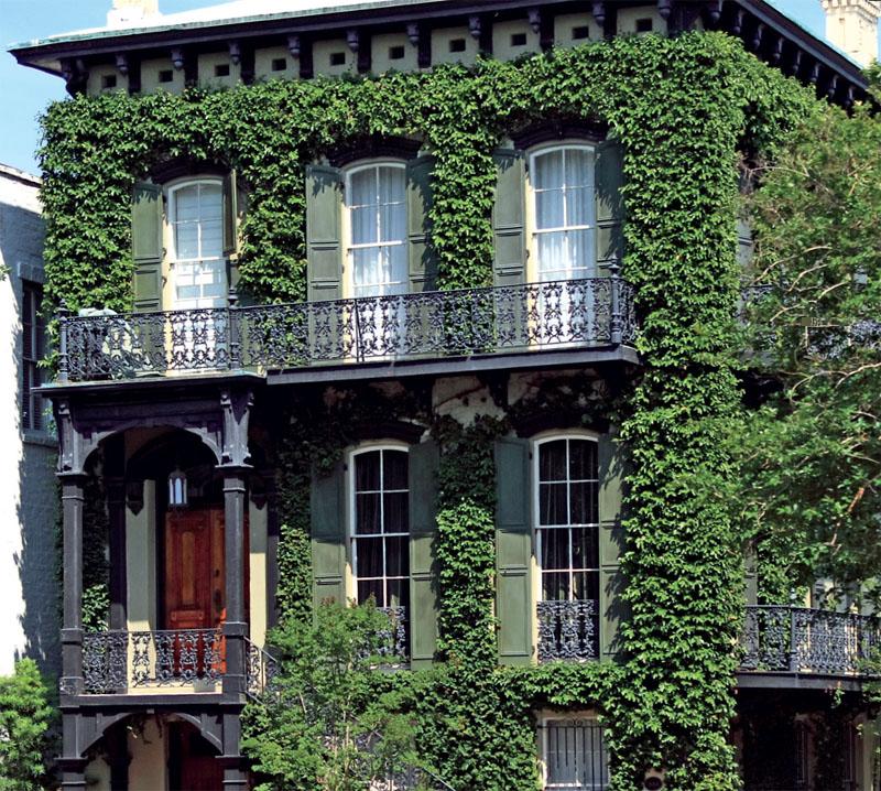 Вертикальные сады Патрика Бланка в Париже, как сделать. Стили Ландшафт АССбуд - строительный портал