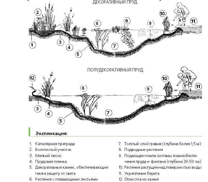 Как сделать пруд для рыбы на реке